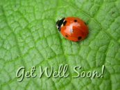 free get well cards